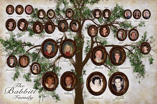 Babbitt Family Tree