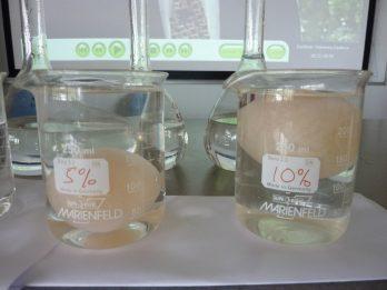 Egg osmosis experiment (2)