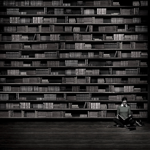 Zen librarian