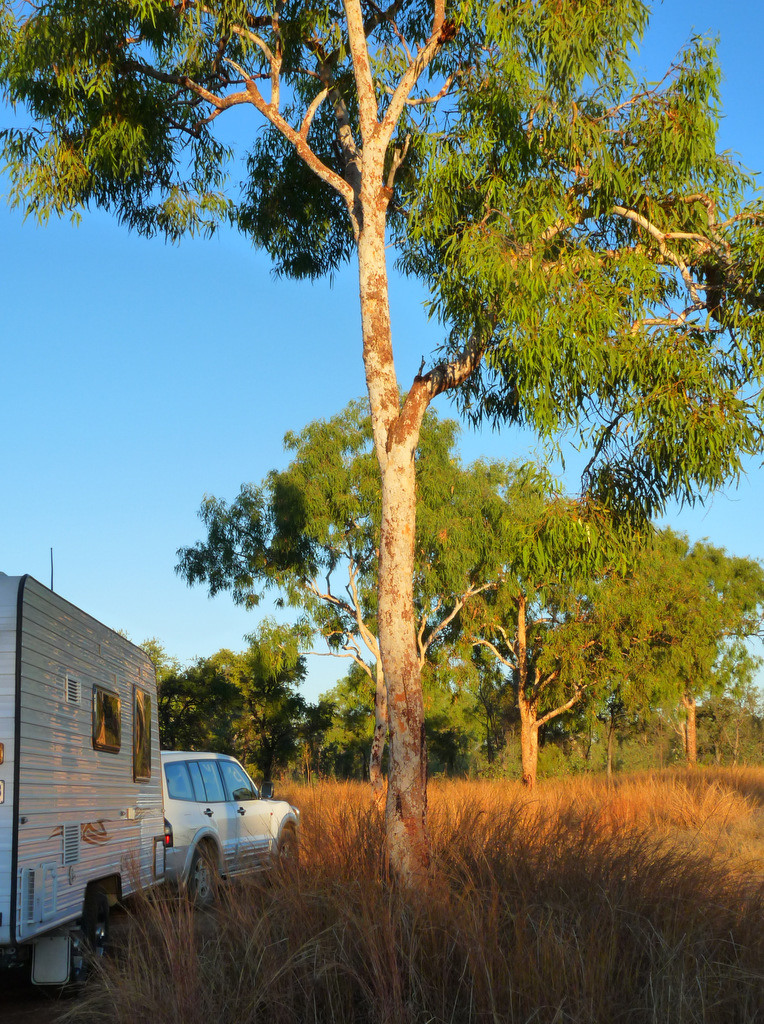 Carpentaria Highway